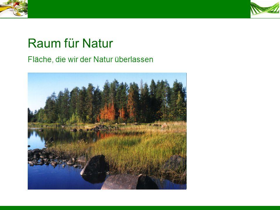 Raum für Natur Fläche, die wir der Natur überlassen