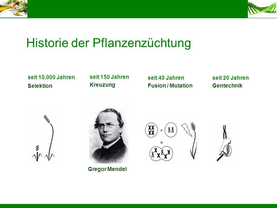 Historie der Pflanzenzüchtung