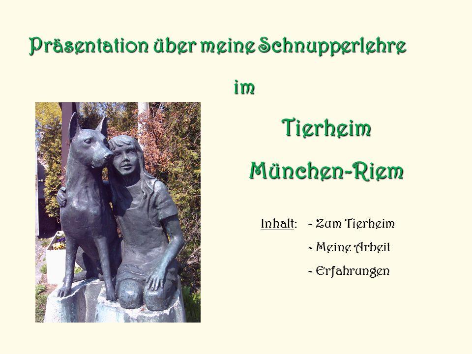 Tierheim München-Riem