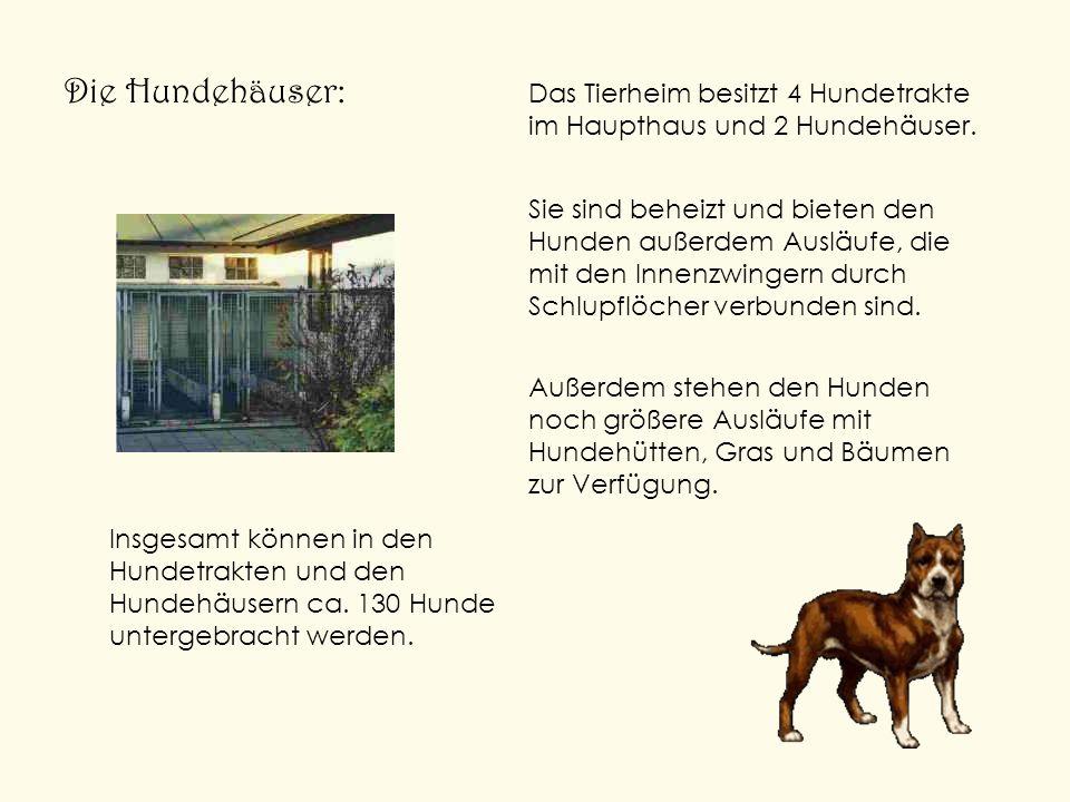 Die Hundehäuser:Das Tierheim besitzt 4 Hundetrakte im Haupthaus und 2 Hundehäuser.