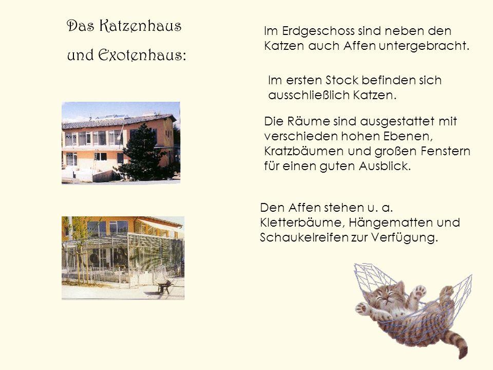 Das Katzenhaus und Exotenhaus: