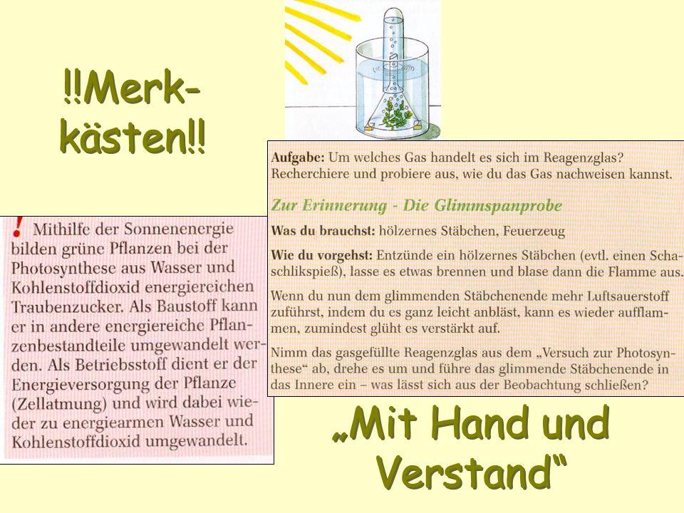 """""""Mit Hand und Verstand"""