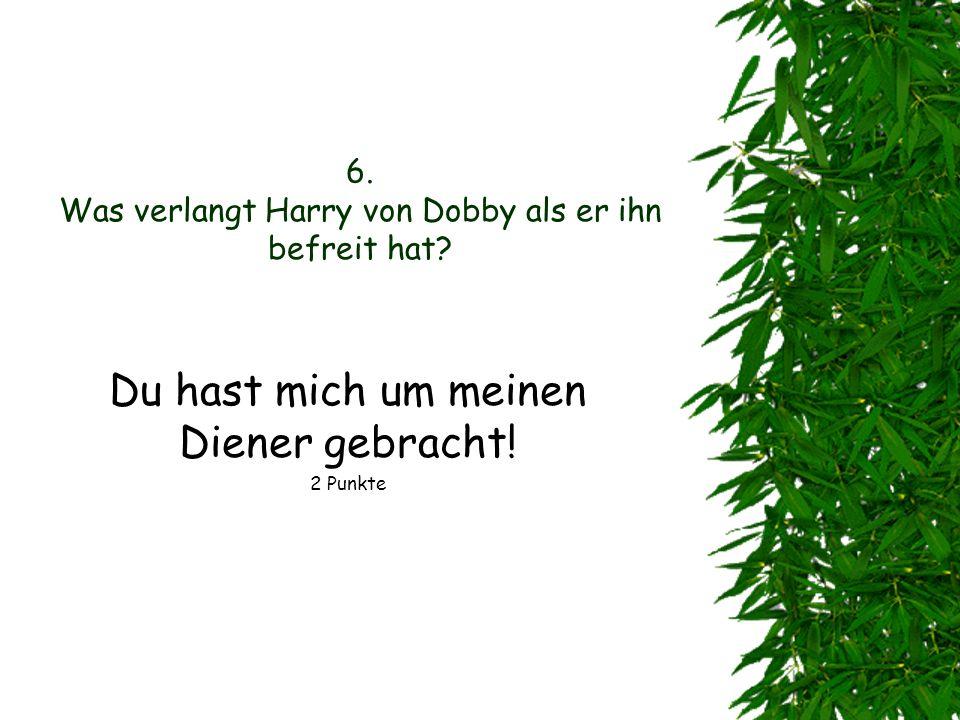 6. Was verlangt Harry von Dobby als er ihn befreit hat