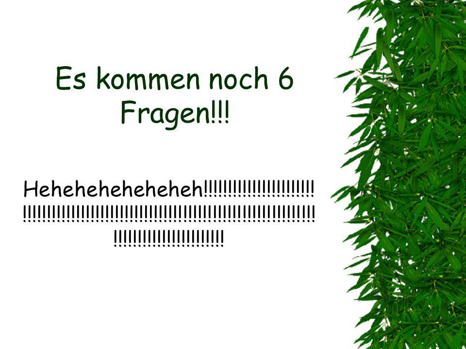 Es kommen noch 6 Fragen!!!Heheheheheheheh!!!!!!!!!!!!!!!!!!!!!!!!!!!!!!!!!!!!!!!!!!!!!!!!!!!!!!!!!!!!!!!!!!!!!!!!!!!!!!!!!!!!!!!!!!!!!!!!!!!!!!!!!!