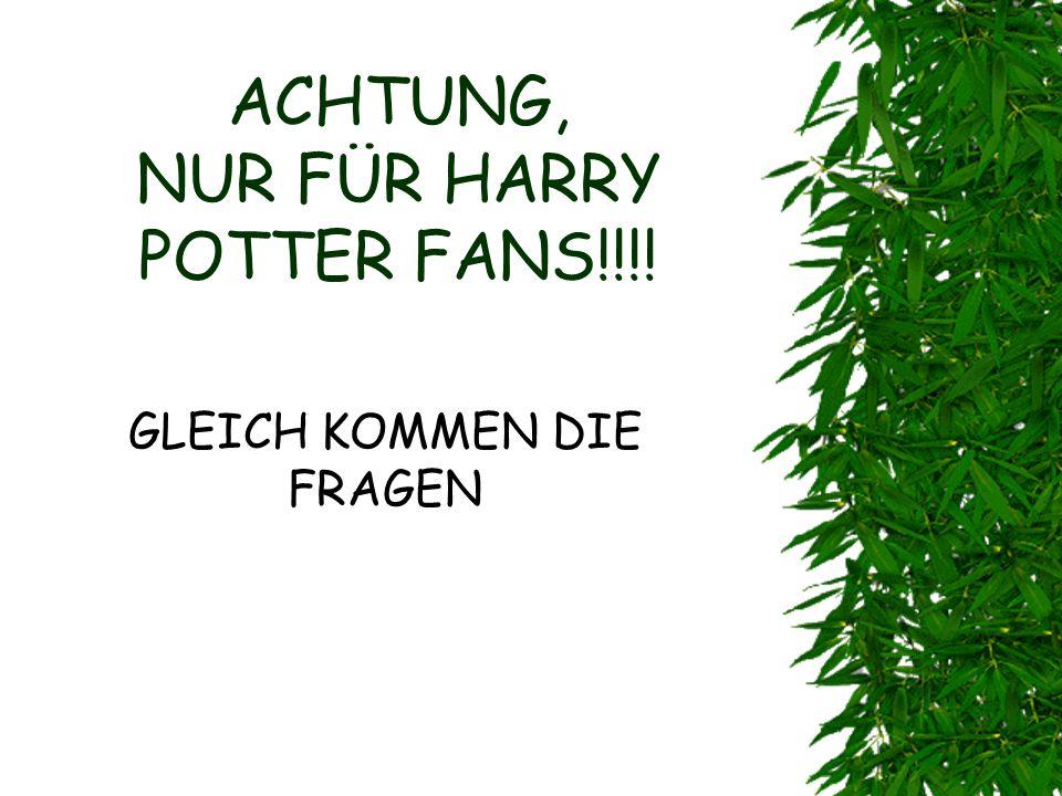 ACHTUNG, NUR FÜR HARRY POTTER FANS!!!!