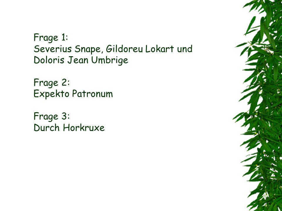 Frage 1: Severius Snape, Gildoreu Lokart und Doloris Jean Umbrige Frage 2: Expekto Patronum Frage 3: Durch Horkruxe