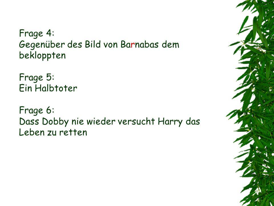 Frage 4: Gegenüber des Bild von Barnabas dem bekloppten Frage 5: Ein Halbtoter Frage 6: Dass Dobby nie wieder versucht Harry das Leben zu retten