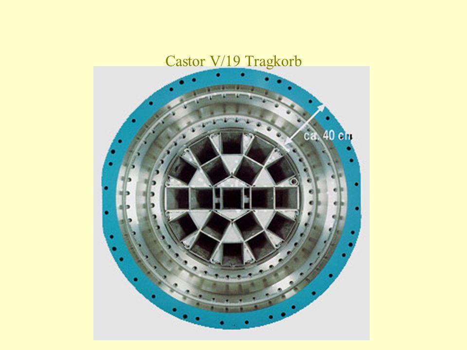 Castor V/19 Tragkorb