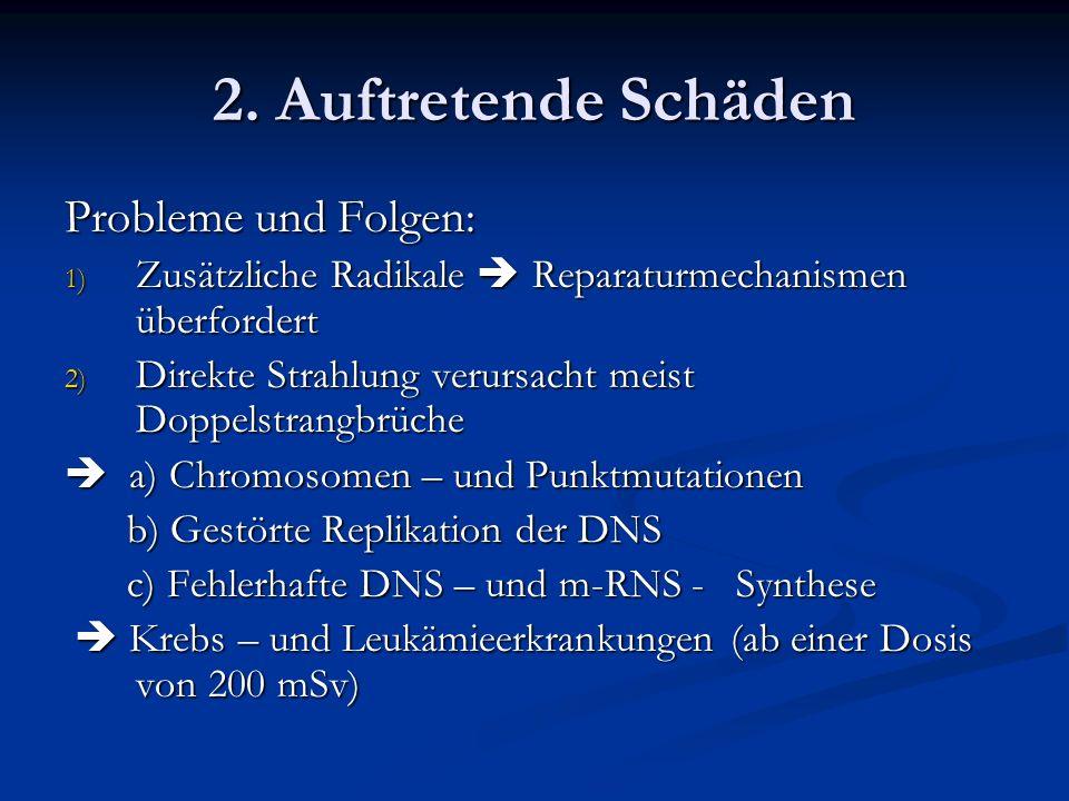 2. Auftretende Schäden Probleme und Folgen: