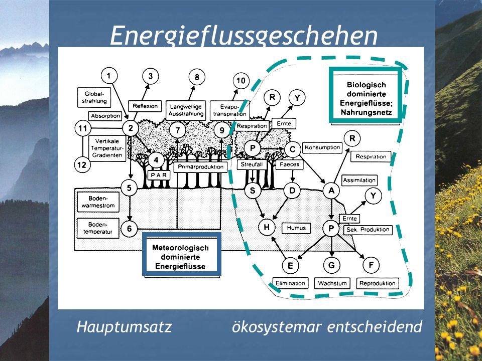 Energieflussgeschehen