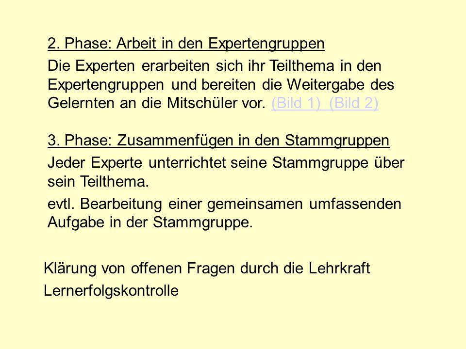 2. Phase: Arbeit in den Expertengruppen