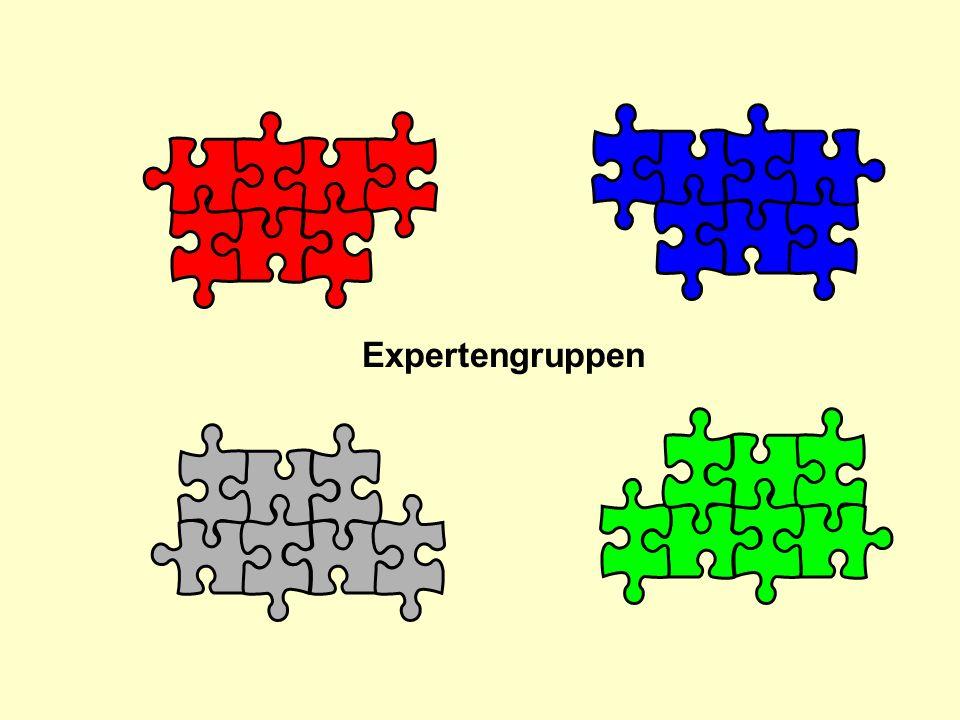 Expertengruppen