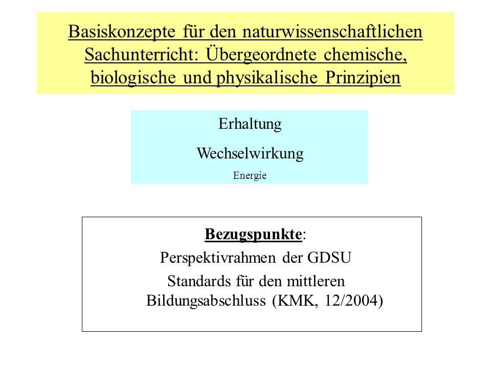 Basiskonzepte für den naturwissenschaftlichen Sachunterricht: Übergeordnete chemische, biologische und physikalische Prinzipien