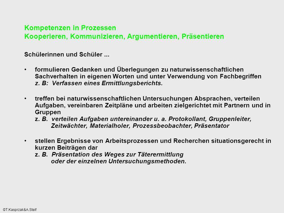 Kompetenzen in Prozessen Kooperieren, Kommunizieren, Argumentieren, Präsentieren