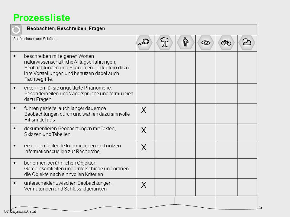 Prozessliste X Beobachten, Beschreiben, Fragen