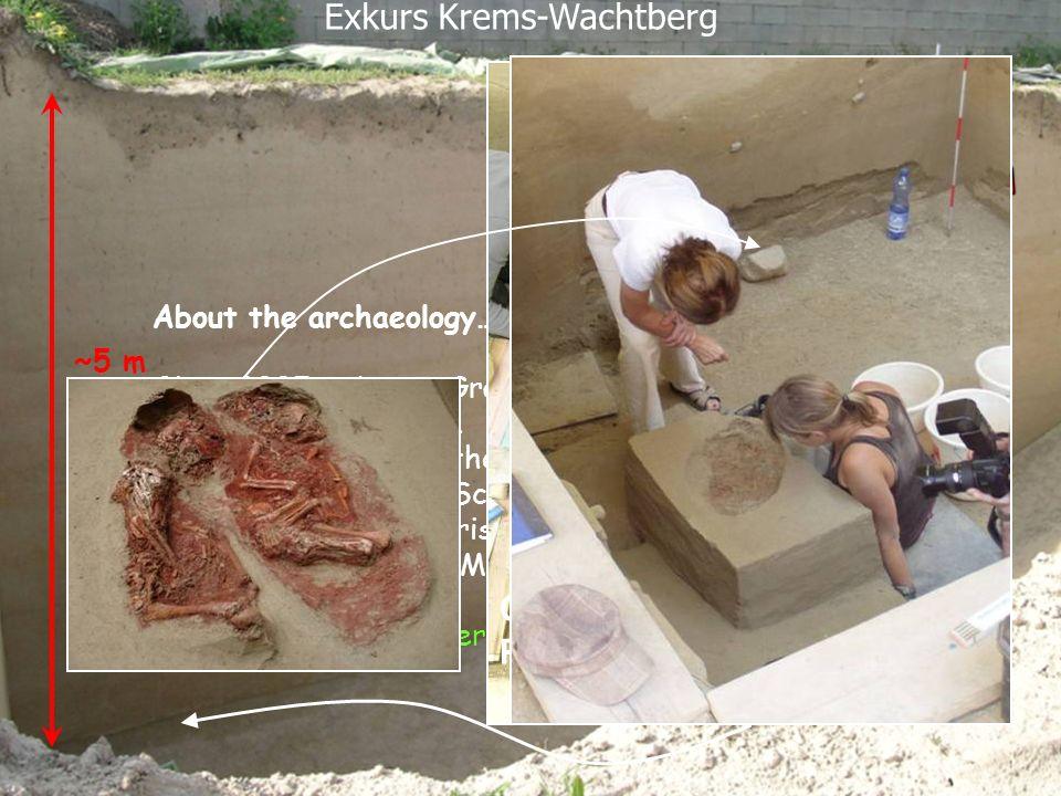 Exkurs Krems-Wachtberg