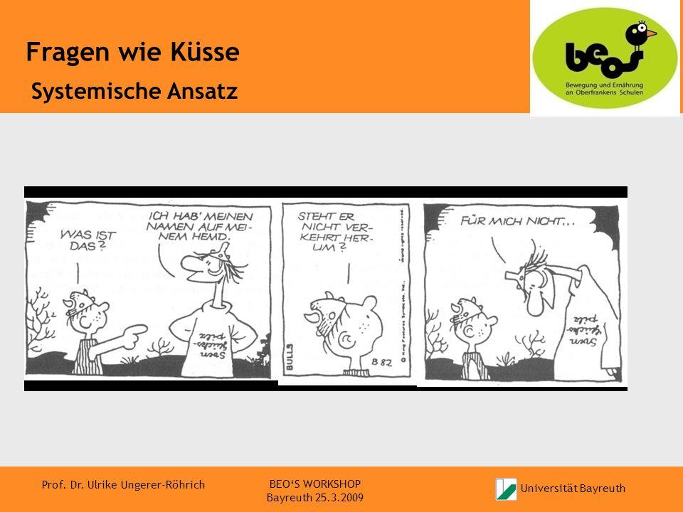 Systemische Ansatz BEO'S WORKSHOP Bayreuth 25.3.2009