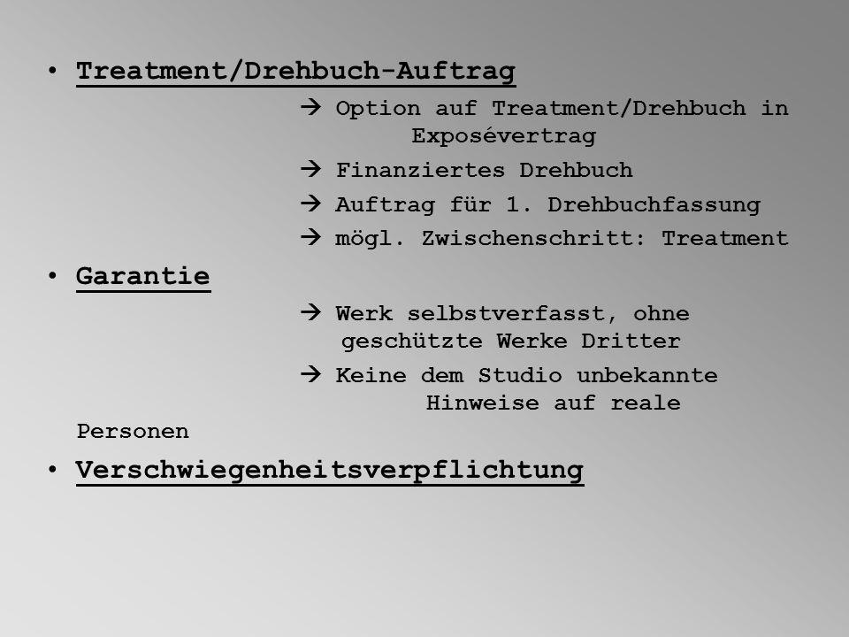 Treatment/Drehbuch-Auftrag