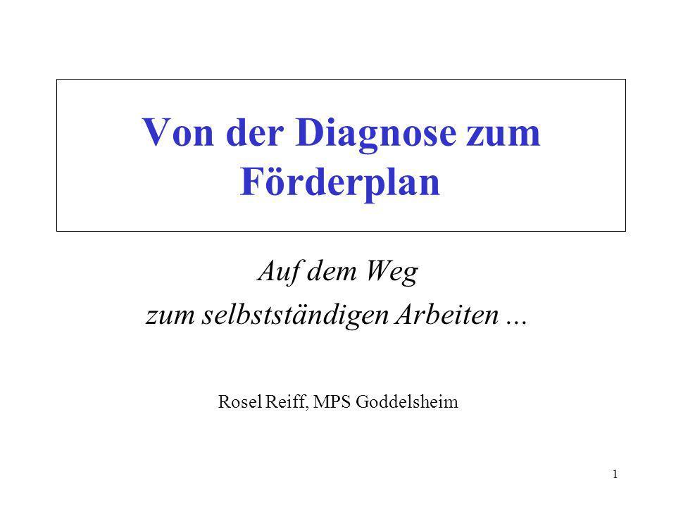 Von der Diagnose zum Förderplan