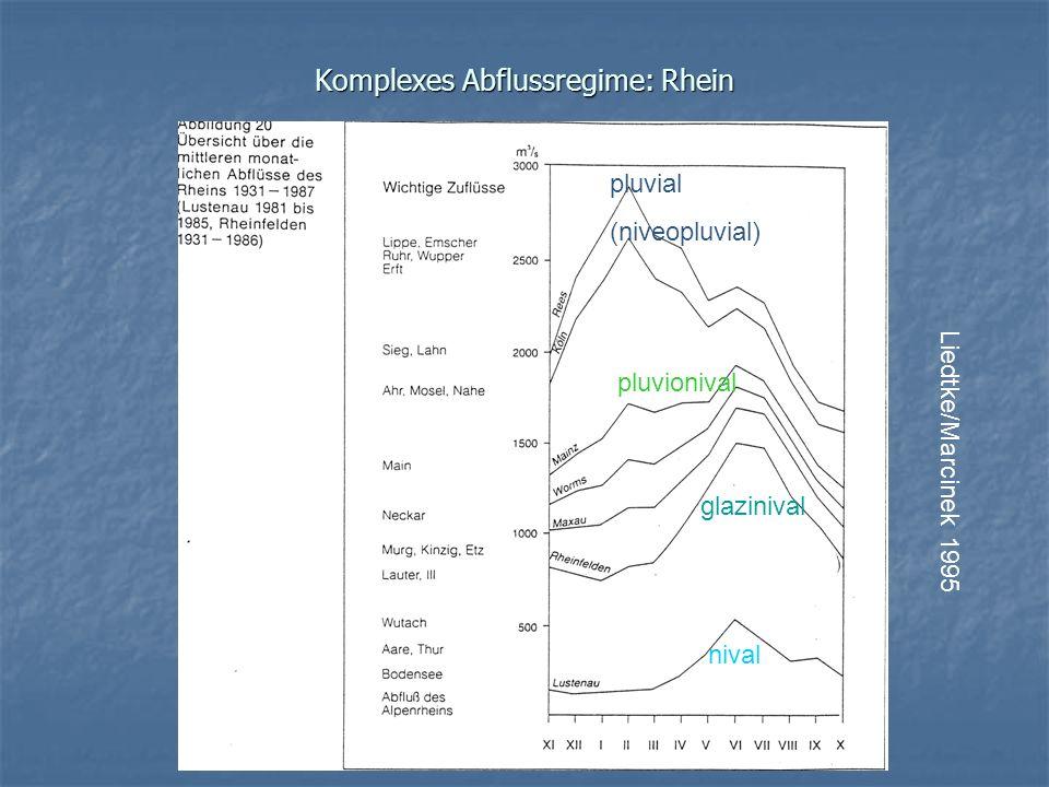 Komplexes Abflussregime: Rhein