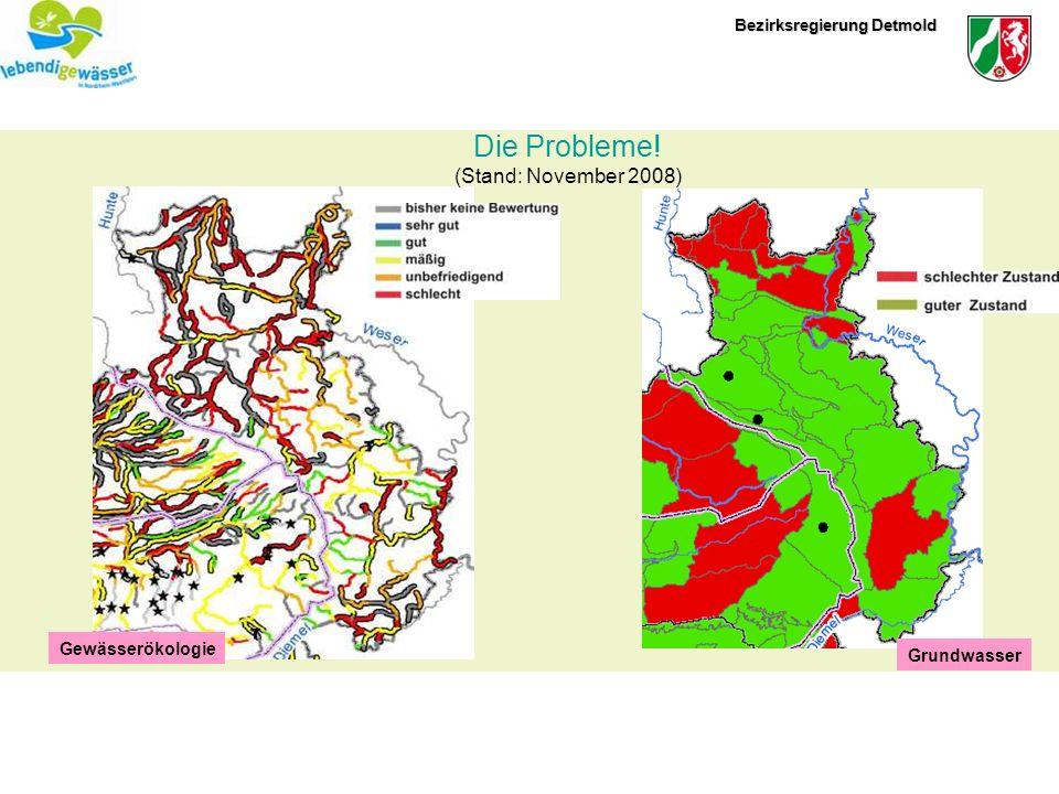 Die Probleme! (Stand: November 2008) Gewässerökologie Grundwasser