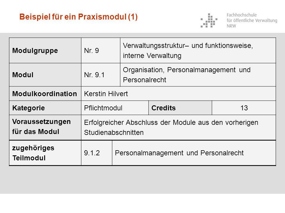 Beispiel für ein Praxismodul (1)