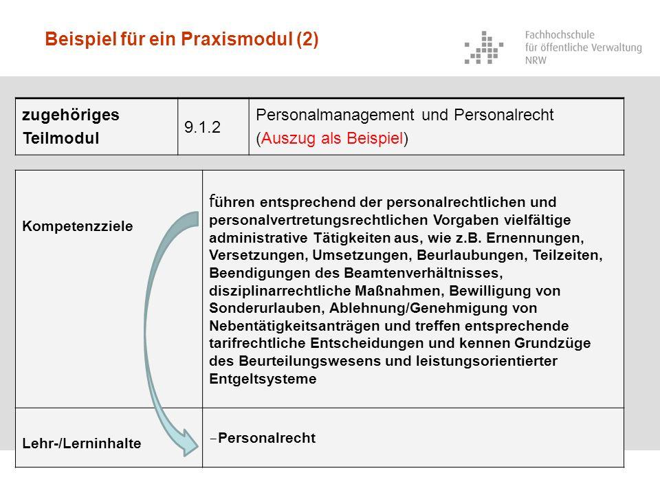 Beispiel für ein Praxismodul (2)