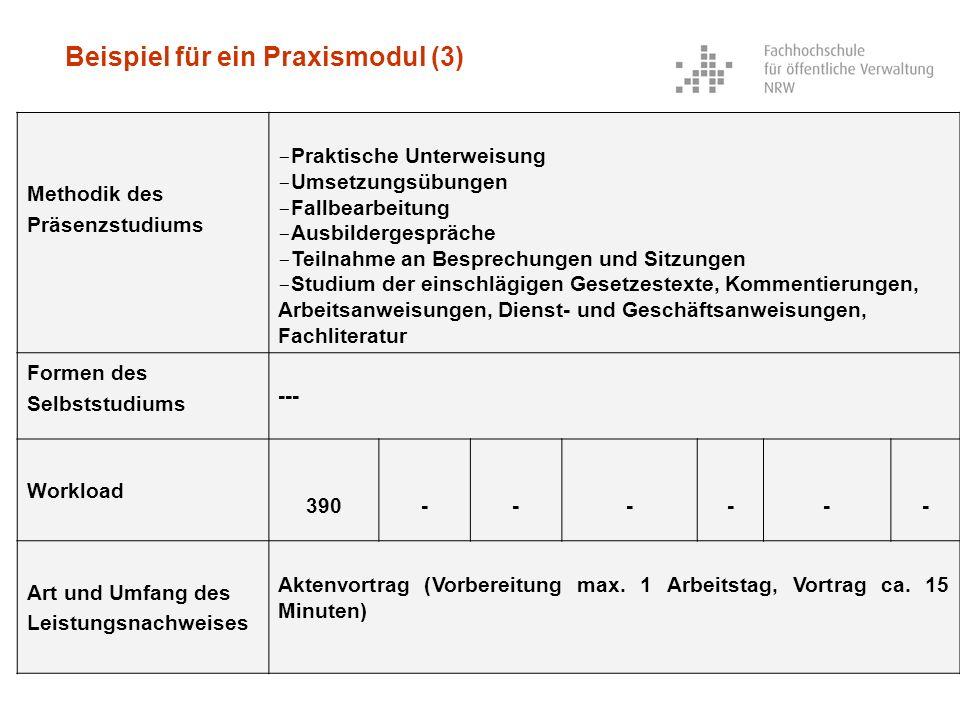 Beispiel für ein Praxismodul (3)