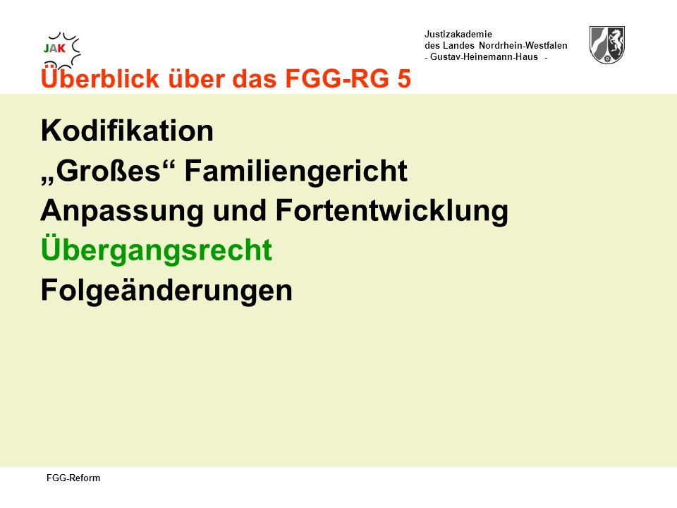 """""""Großes Familiengericht Anpassung und Fortentwicklung Übergangsrecht"""