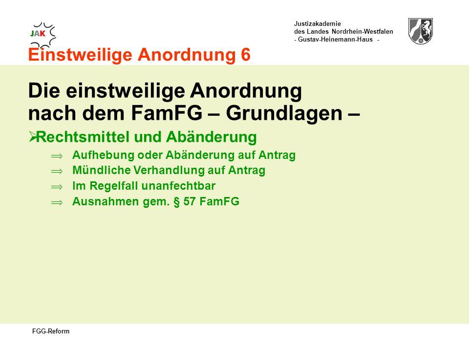 Die einstweilige Anordnung nach dem FamFG – Grundlagen –