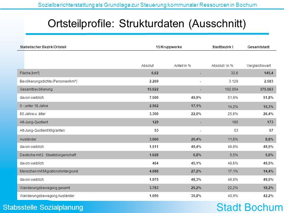 Ortsteilprofile: Strukturdaten (Ausschnitt)