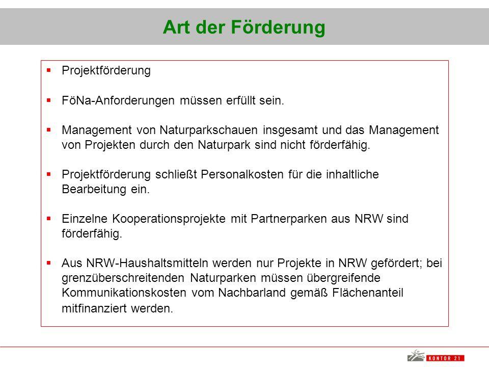 Art der Förderung Projektförderung