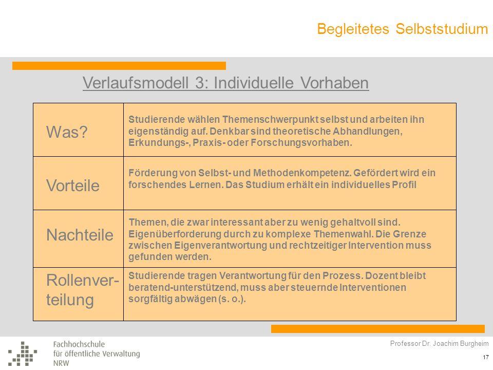 Verlaufsmodell 3: Individuelle Vorhaben