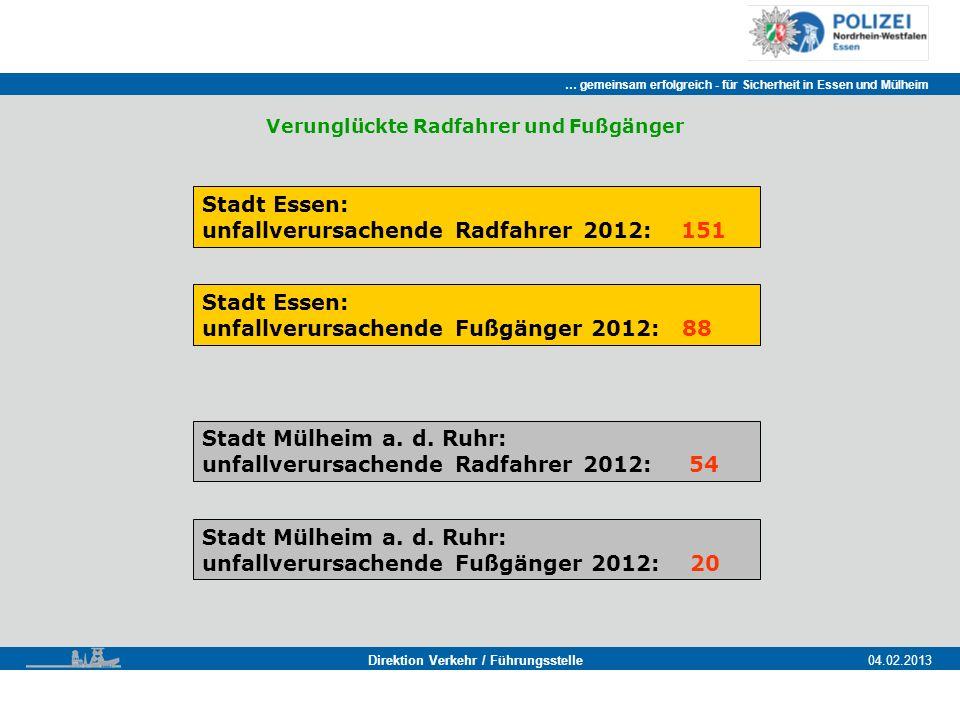 Stadt Essen: unfallverursachende Radfahrer 2012: 151