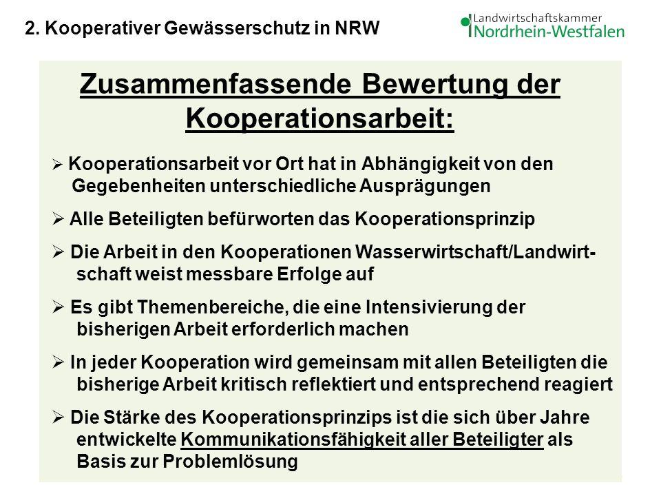 Zusammenfassende Bewertung der Kooperationsarbeit: