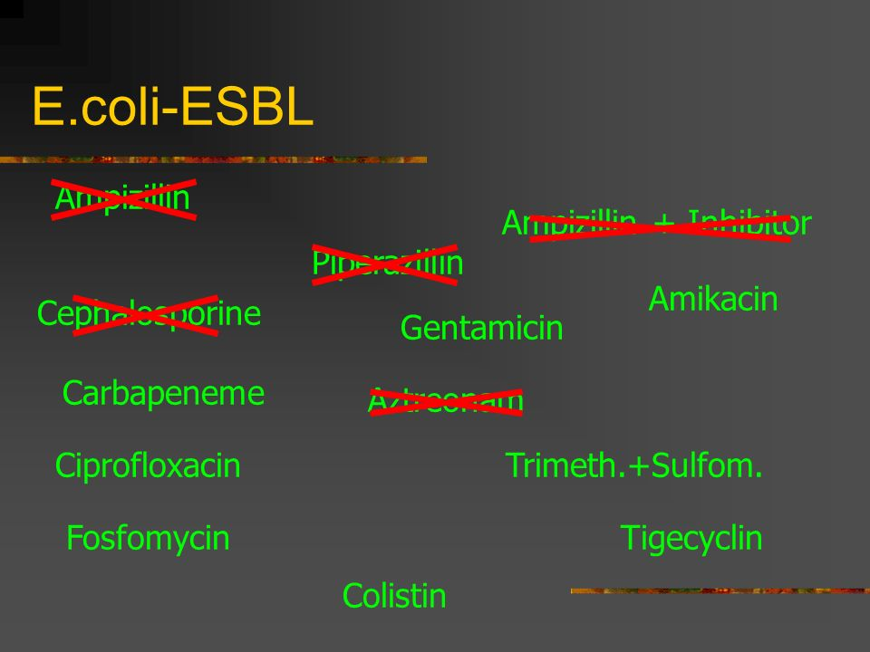 Ampizillin + Inhibitor