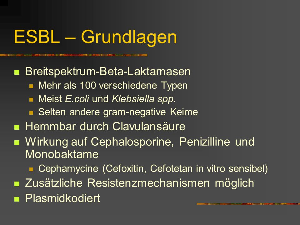 ESBL – Grundlagen Breitspektrum-Beta-Laktamasen