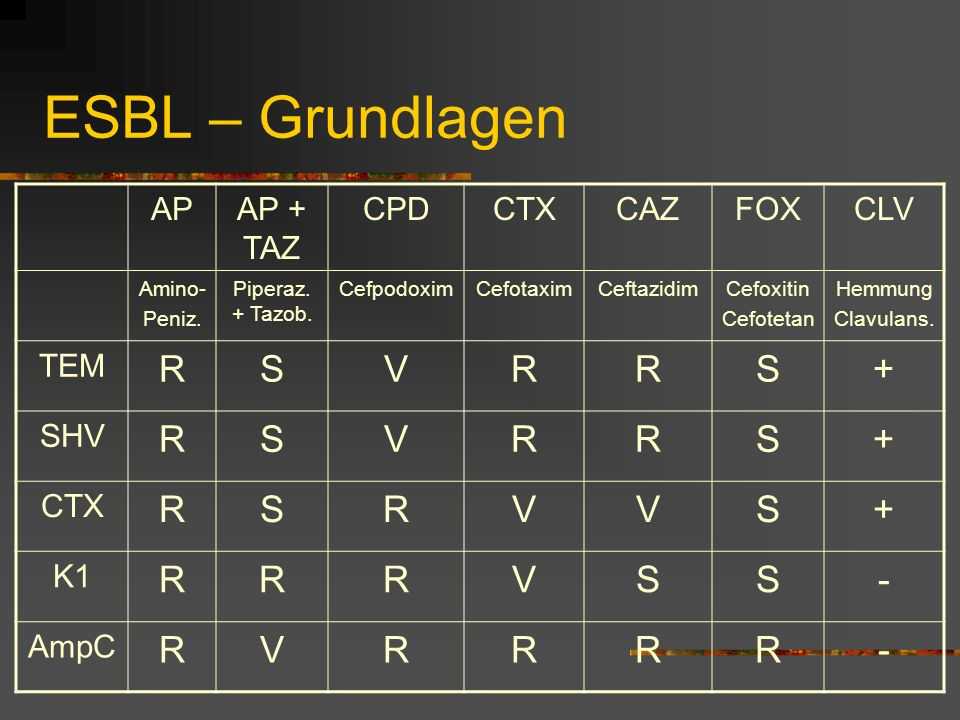 ESBL – Grundlagen R S V + - AP AP + TAZ CPD CTX CAZ FOX CLV TEM SHV K1
