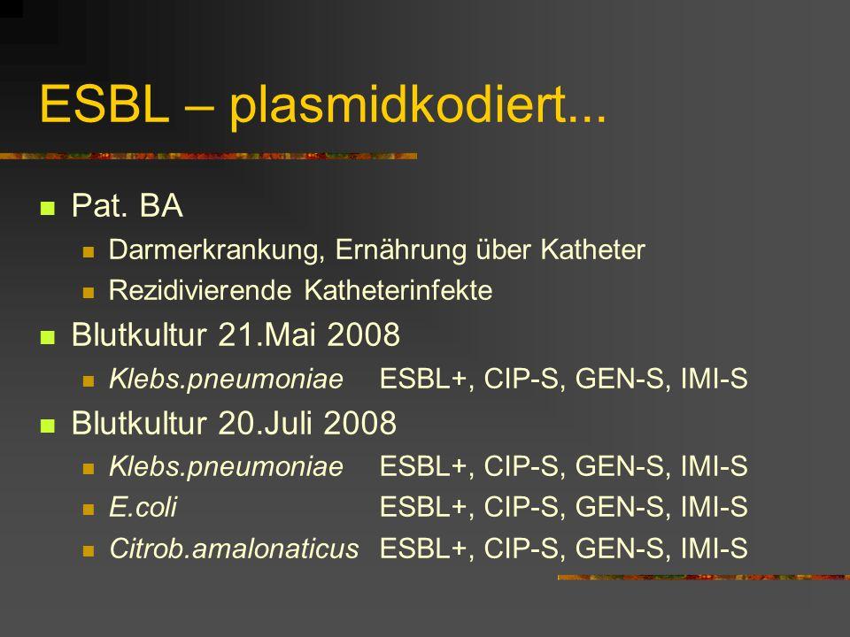 ESBL – plasmidkodiert... Pat. BA Blutkultur 21.Mai 2008