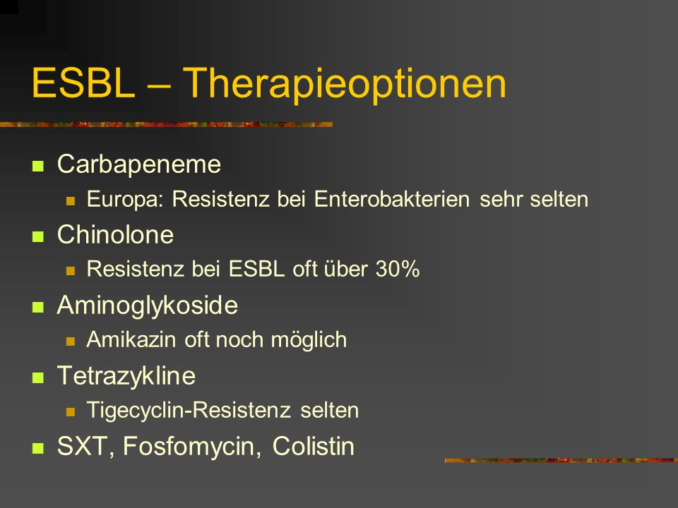 ESBL – Therapieoptionen