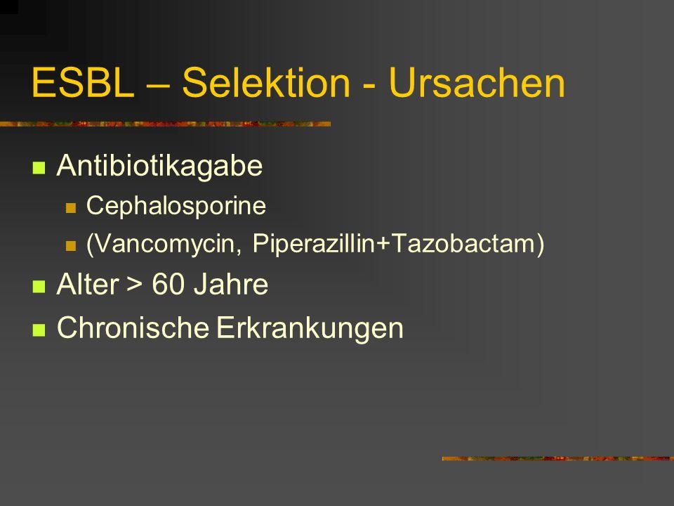 ESBL – Selektion - Ursachen