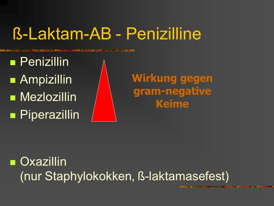 ß-Laktam-AB - Penizilline