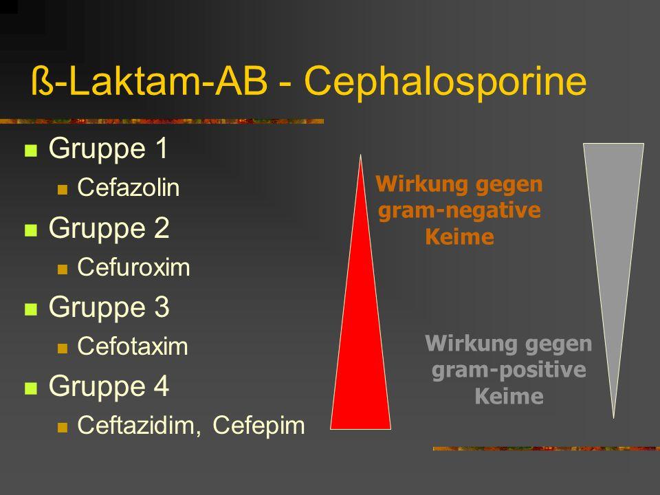 ß-Laktam-AB - Cephalosporine