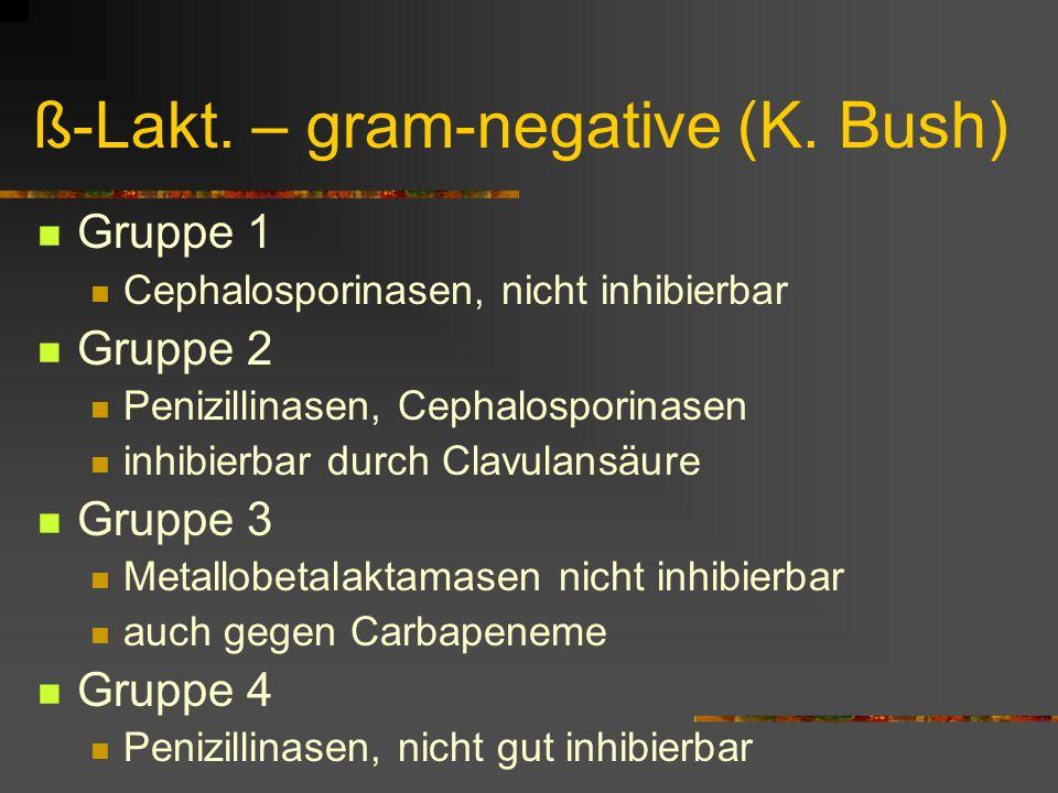 ß-Lakt. – gram-negative (K. Bush)