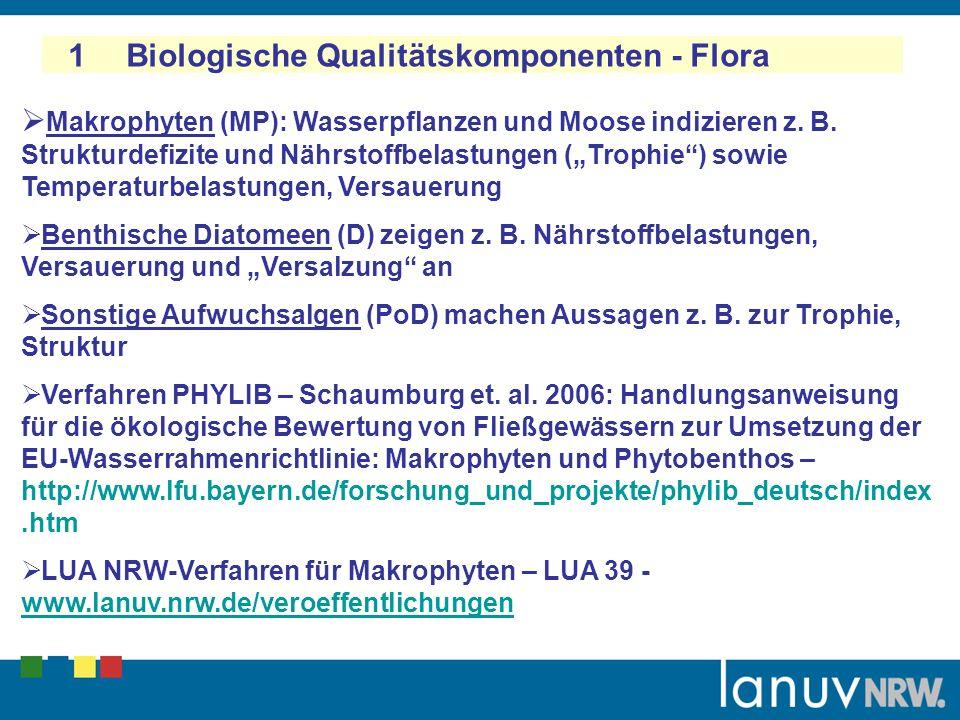 1 Biologische Qualitätskomponenten - Flora