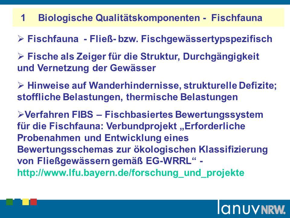 1 Biologische Qualitätskomponenten - Fischfauna