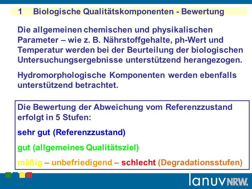 1 Biologische Qualitätskomponenten - Bewertung