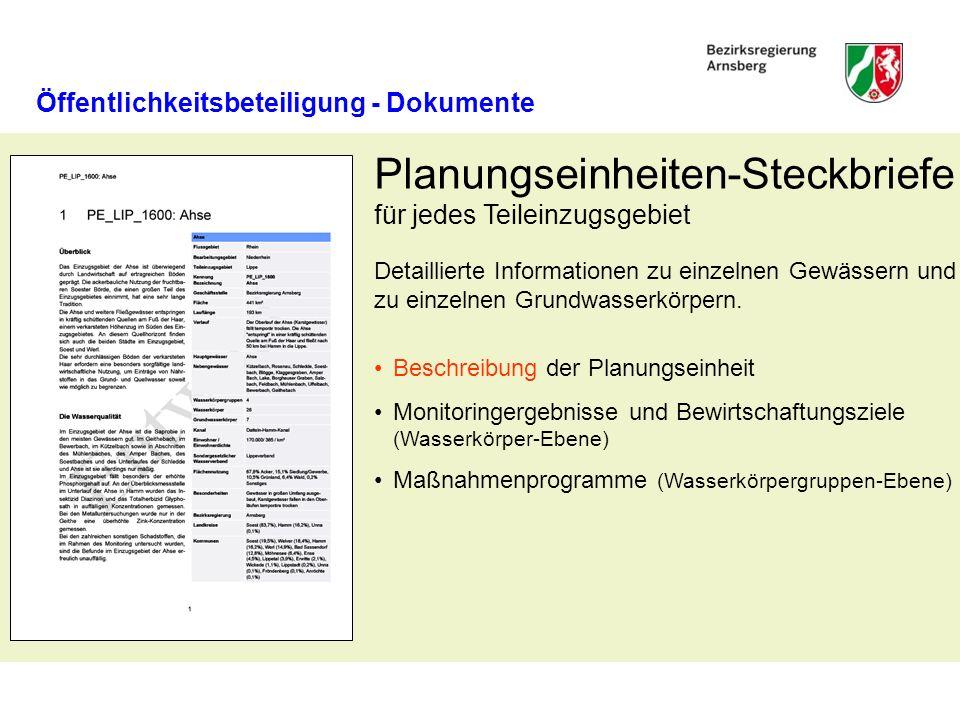 Planungseinheiten-Steckbriefe