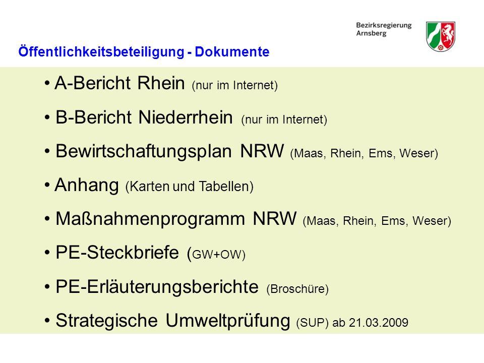 A-Bericht Rhein (nur im Internet)