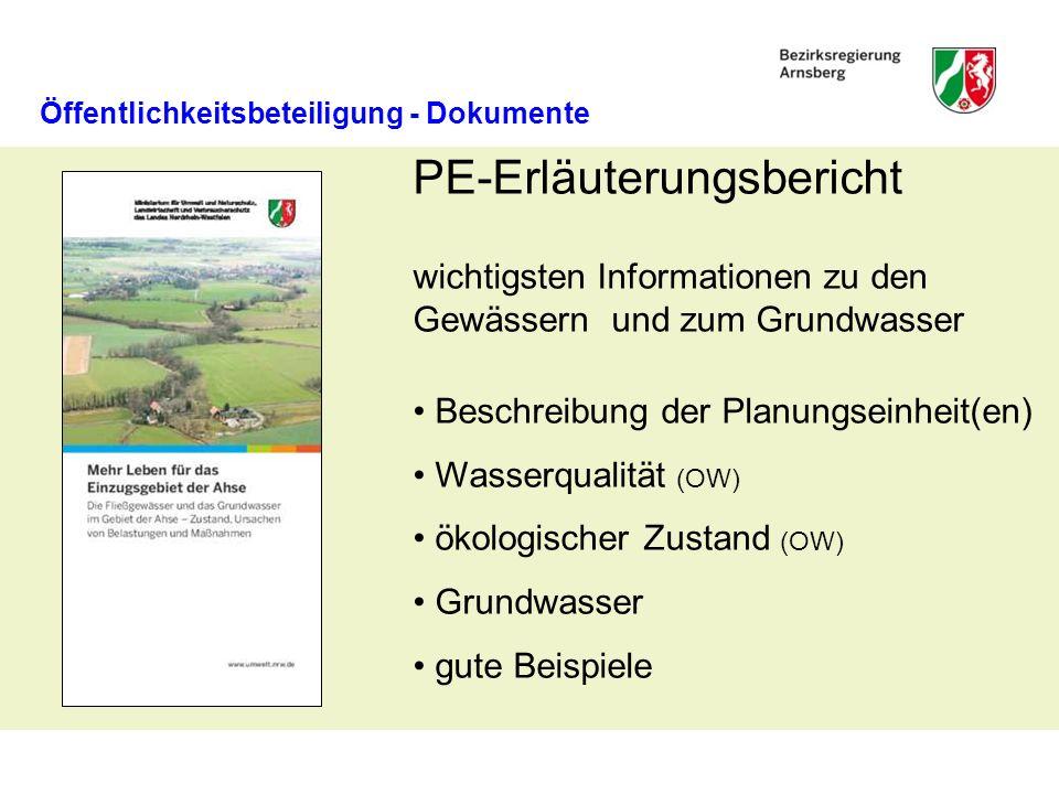 PE-Erläuterungsbericht